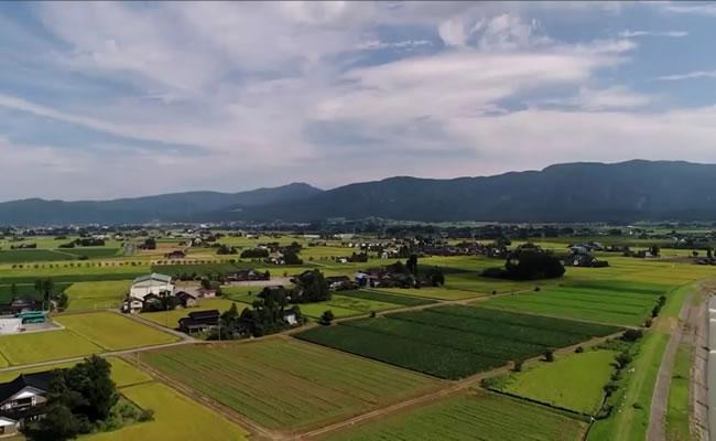 畑醸造の歴史トップ画像